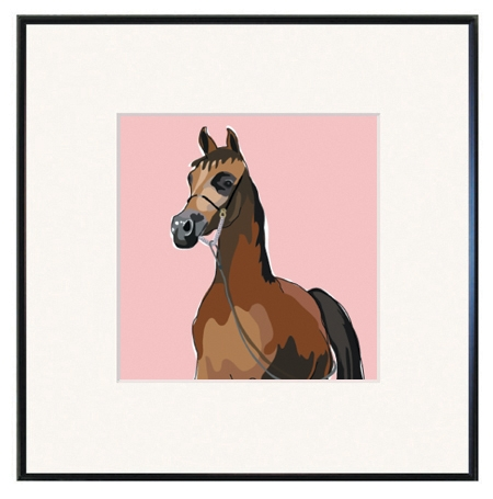 Arabian Horse Framed Prints