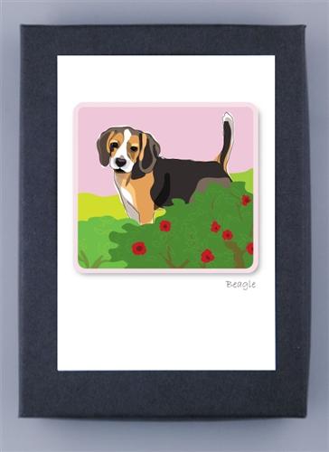 beagle box notes