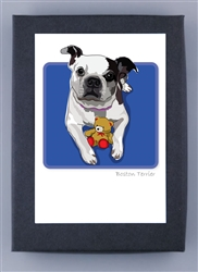 Boston Terrier Grrreen Box Notes