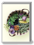 Vegetable Basket Note Cards