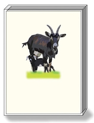 Goat Note Cards