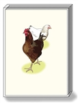 Chicken Note Cards