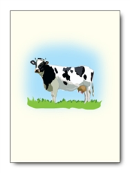 Holstein Cow Card