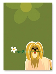 "Shih Tzu Greeting Card: ""Get well soon!""(inside) (1 card)"