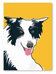 Border Collie Greeting Card: (Blank Inside) (1 card)