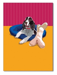 Springer Spaniel Birthday Card
