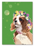 Cavalier Birthday Card