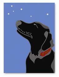 Labrador Greeting Card