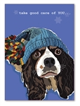 Cavalier King Charles Get Well Card