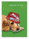Dachshund Friendship Card