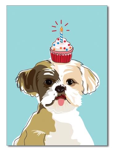 Shihtzu Birthday Card