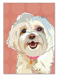 Maltese Birthday Card